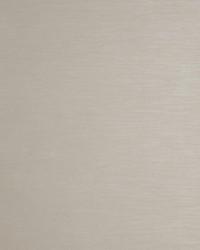 W0059 Stone Wallpaper by  Clarke and Clarke Wallpaper
