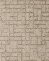 W0061 Taupe Wallpaper by  Clarke and Clarke Wallpaper