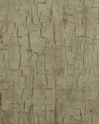 Tree Bark Antique by  Clarke and Clarke Wallpaper