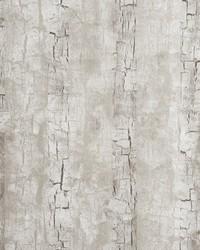 W0062 Birch Wallpaper by  Clarke and Clarke Wallpaper
