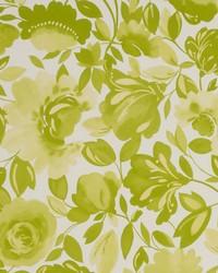 Caitlin Citrus Wallpaper by