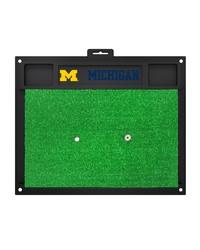 Michigan Golf Hitting Mat 20 x 17 by
