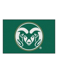 Colorado State Starter Rug 20x30 by