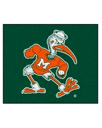 Miami Tailgater Rug 60x72 by