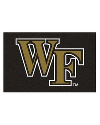 Wake Forest Starter Rug 20x30 by
