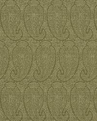 Classic Paisley Fabric  Eco Paisley Aspen