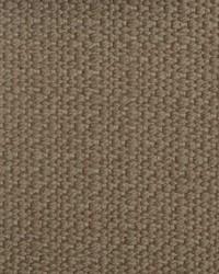 B  Berger 1209 9 Driftwood Fabric