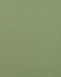 B  Berger 1218 53 Meadow Fabric