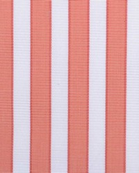 B  Berger 1220 37 Salmon Fabric
