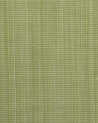 B  Berger 1230 28 Key Lime Fabric