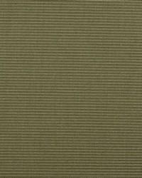 B  Berger 1231 54 Pine Fabric