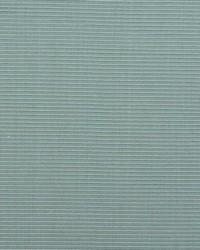 B  Berger 1231 62 Pacific Fabric