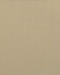 B  Berger 1231 8 Chamois Fabric