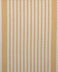 B  Berger 1815 23 Topaz Fabric