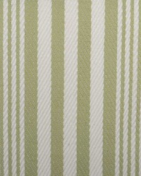 B  Berger 1815 55 Leek Green Fabric