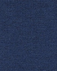 DW16016 99 BLUEBERRY by