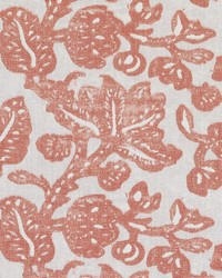LE42617 31 CORAL by