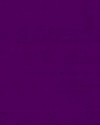 DR61789 49 PURPLE by
