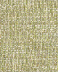 DW16416 597 GRASS by