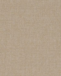 DW16418 152 WHEAT by