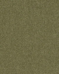 DW16418 257 MOSS by