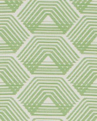 DO61918 2 GREEN by