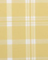 B  Berger 6011 21 Lemonade Fabric