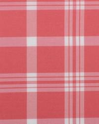 B  Berger 6011 44 Coral Fabric