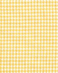 Minnie Daffodil by