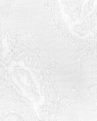 White Classic Paisley Fabric  Serafina White