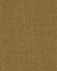 Interim Bamboo by