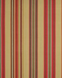 Encinitas Stripe Bougainvillea by