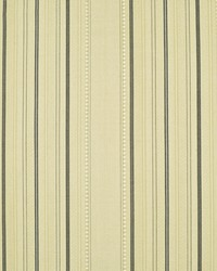 Saltillo Stripe Mesquite by