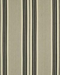 Salinas Stripe Cinder by