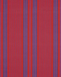 Salinas Stripe Maasai by
