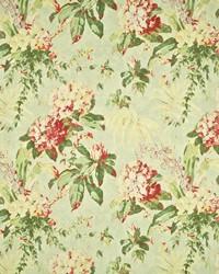 Washington Floral Verdant by
