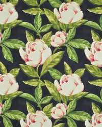 Mississippi Floral Midnight by