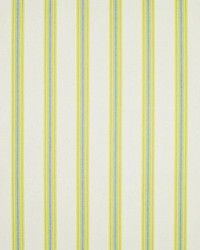 Saline Stripe Sunshine by
