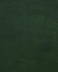 Green Silk Velvet Fabric  Palace Silk Velvet Juniper