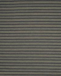 Riverbed Stripe Ink by