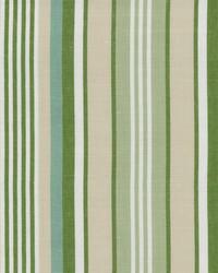 Meadow Stripe Spring by