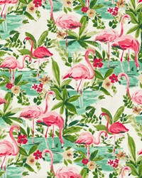 Floridian Flamingo In Bloom by