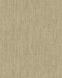 Global Chic Sweet Grass Wallpaper by