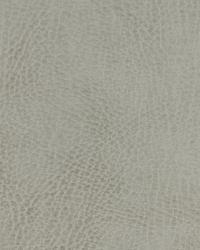 Robert Allen Nubuckston Powder Fabric