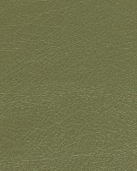 Brutus Lichen by  Robert Allen