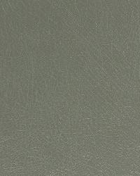Robert Allen Brutus Spa Fabric