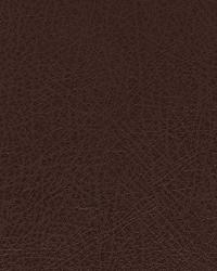 Robert Allen Brutus Molasses Fabric