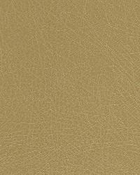 Robert Allen Brutus Wheat Fabric