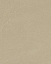 Brutus Linen by  Robert Allen