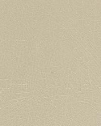 Brutus Parchment by  Robert Allen